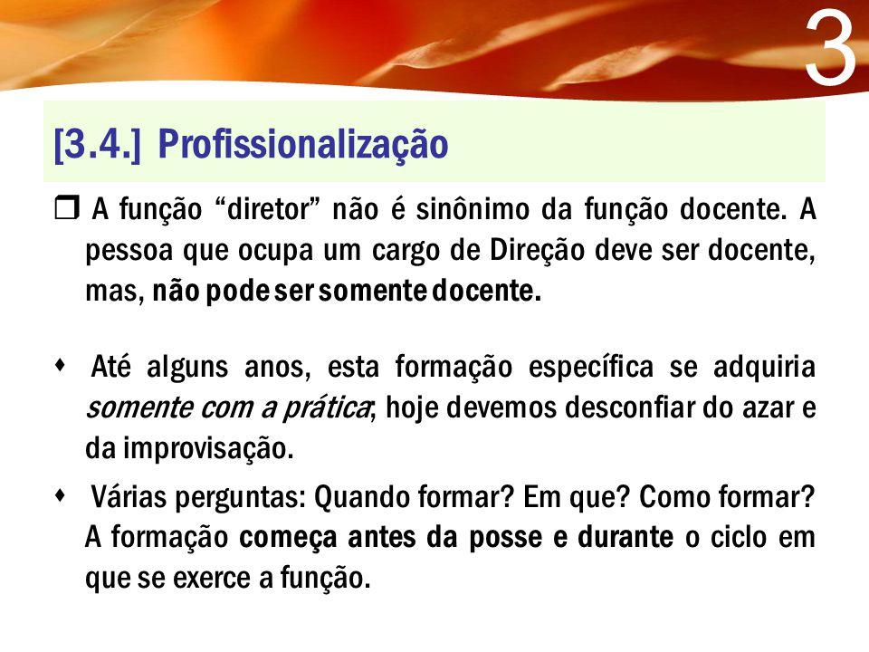 [3.4.] Profissionalização